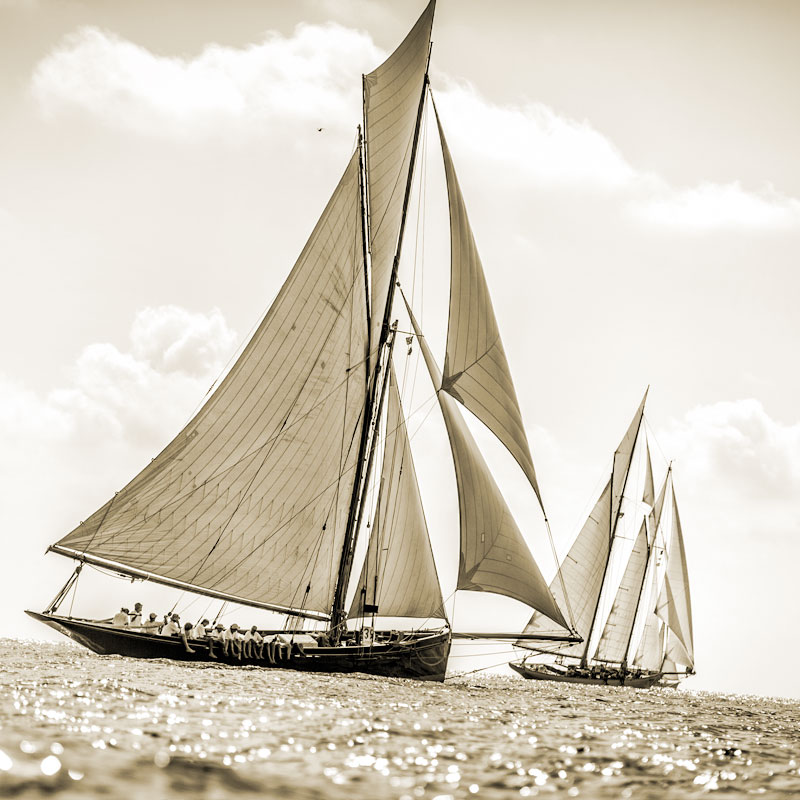 Iscritti / Yachts Registered